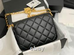 Authentic Classic Flap Bag Wallet The Golden Coin 2020 edition CC CHANEL